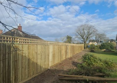 Close Board Fence And Trellis In Didcot